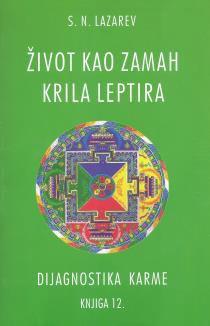 DIJAGNOSTIKA KARME: ŽIVOT KAO ZAMAH KRILA LEPTIRA, KNJIGA 12