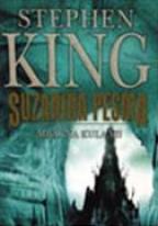 Suzanina pesma - Mračna kula VI
